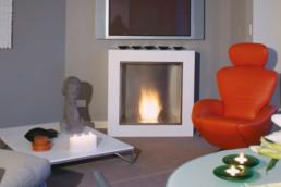 Ecosmart ethanol fireplace cube